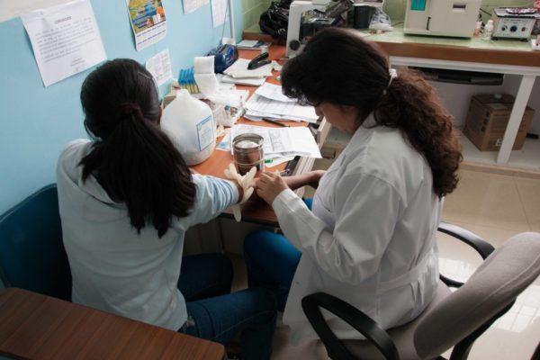 Arbeit als Laborpraktikantin in Ecuador