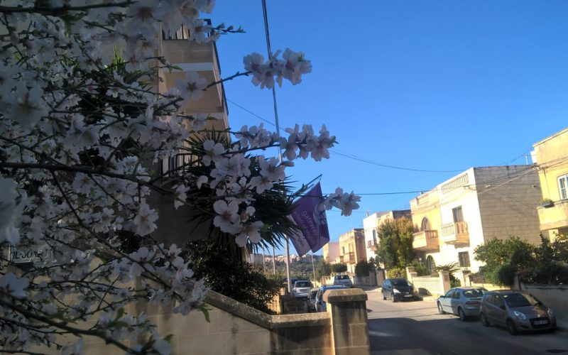 gse-malta-school-and-residence-street-view-2