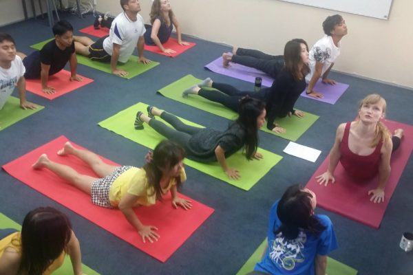 Yoga Activity Sprachschule