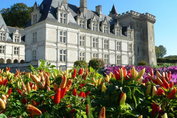 Edu-Seasons Sprachreise Tours  Schlösser Loire
