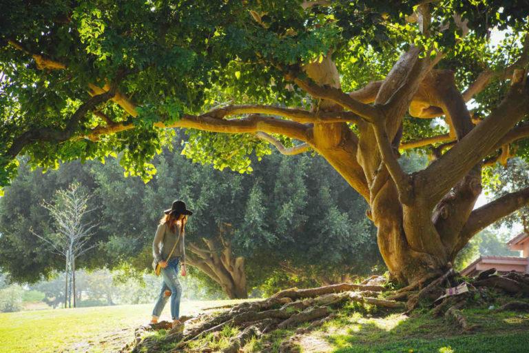 Frau unter einem Baum in Australien