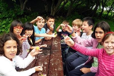 Kinder beim Picknick Familiensprachreise Irland