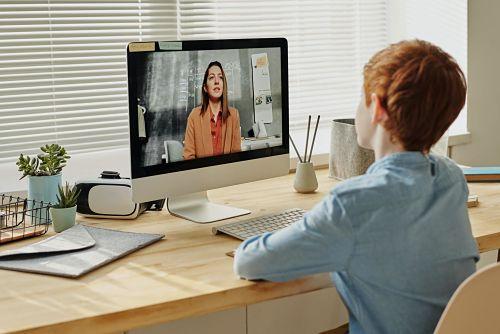 Sabbatical mit Kindern Online Lernen Homeschooling Junge zuhause